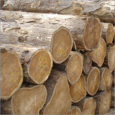 All type of Timber