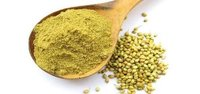 Dehydrated Coriander Powder Leaves