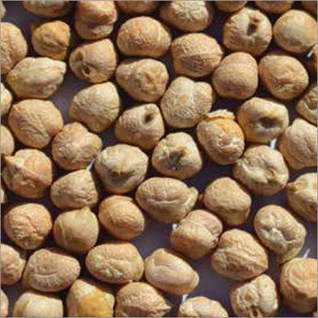 Chickpeas Kabuli