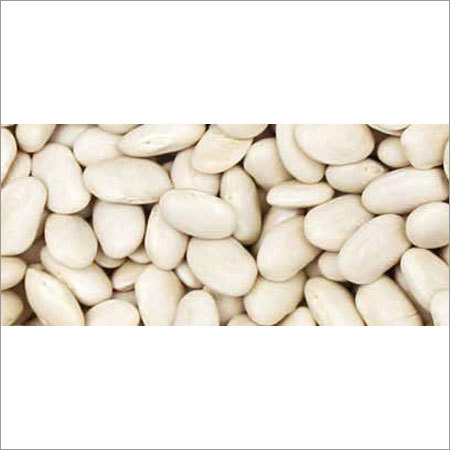 Great Northern Beans