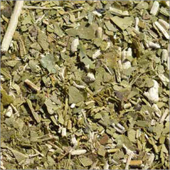Yerba Mate in Bulk