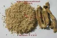 Acorus Calamus T Cut