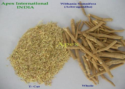 Withania Somnifera Root T Cut