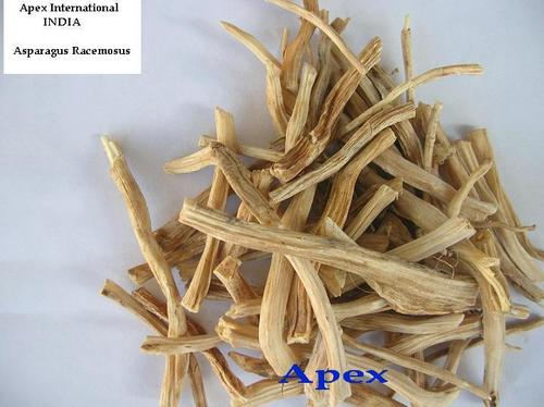 Common Asparagus