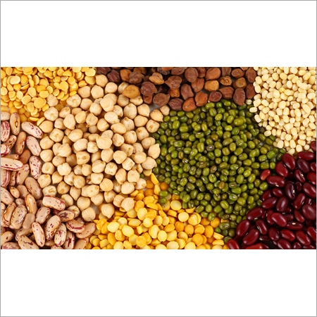 Pulses and Oilseeds