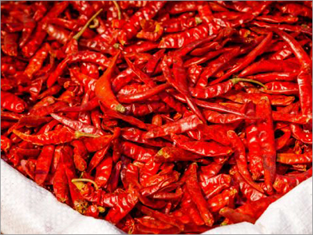 625 Red Chili