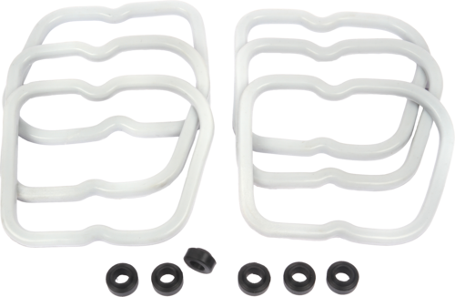 Valve Cover Gasket with Isolator Noise