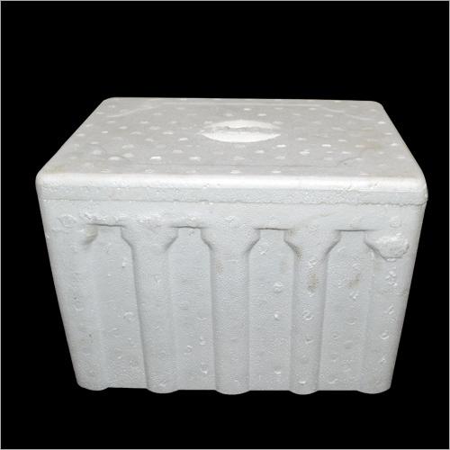 Ice Thermocol Box