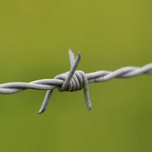 SS Barbed Wire