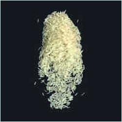 Pusa Basmati Golden Sella Rice