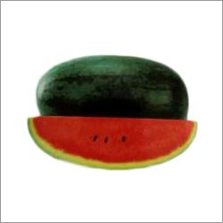 Kiran Watermelon Seeds
