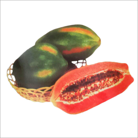 Red Lady 786 F1 Hybrid Papaya Seeds