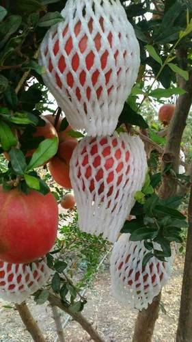 Pomegranate EPE Foam Net