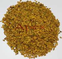 Trigonella Foenumgraecum