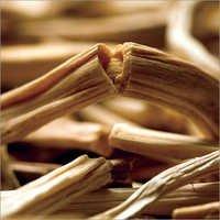Shatavari (Asparagus)