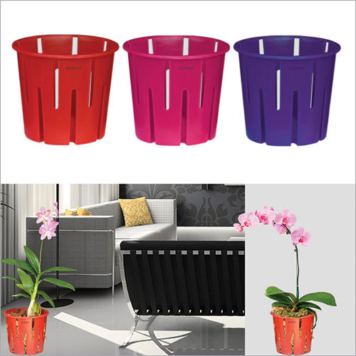 Orchid Self Watering Pot