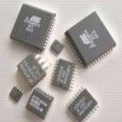 Electronic Microprocessor