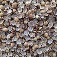 Split Coriander Seed