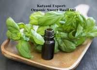 Organic Sweet Basil Oil