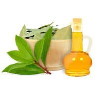 Laurel Leaf Oil Bulk