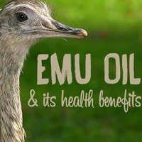 Emu Oil Bulk