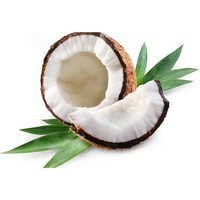 Coconut Oil Bulk