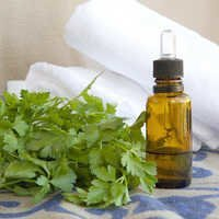 Parsley Seed Oil Bulk