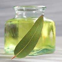 Eucalyptus Oil Bulk