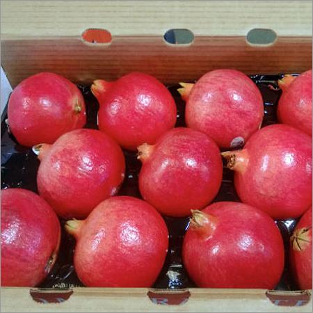 Third party Fruits Procurement