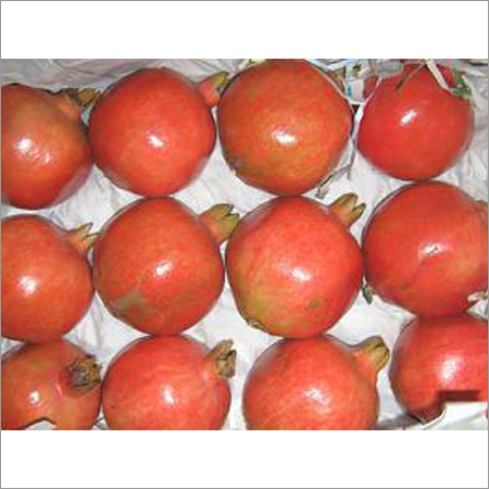 Export Quality Pomegranate