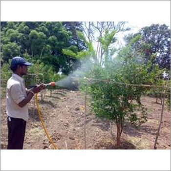 Anar Plantation Inspection Services