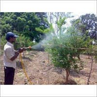 Anar Plantation Inspection Services