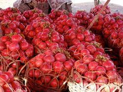 Export Quality Anar