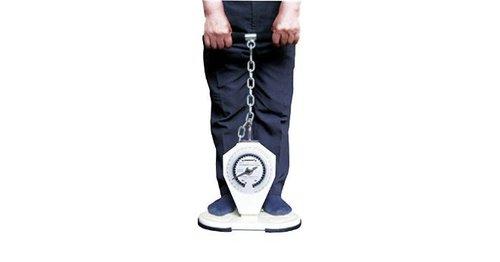Saehan Back - Leg - Chest Dynamometer