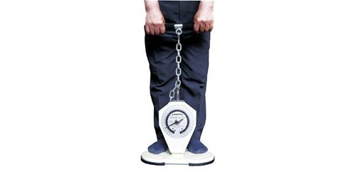 Saehan back - leg - chest dynamometer