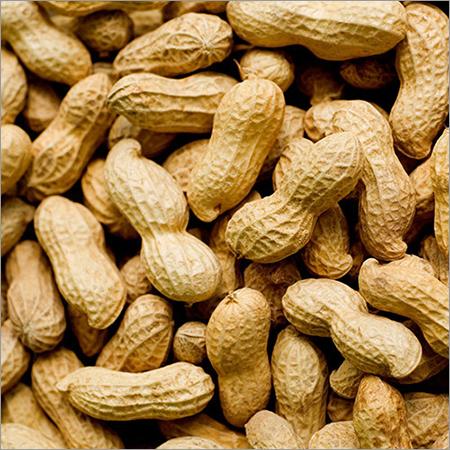 Whole Groundnut
