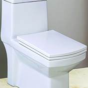 Ceramic One Piece Toilet