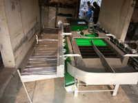 Kinnow Grading Machine