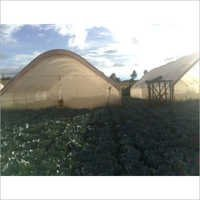 Natural Ventilation Greenhouse