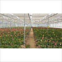 Nursery Poly Greenhouse