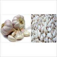 Garlic (Lahsun)