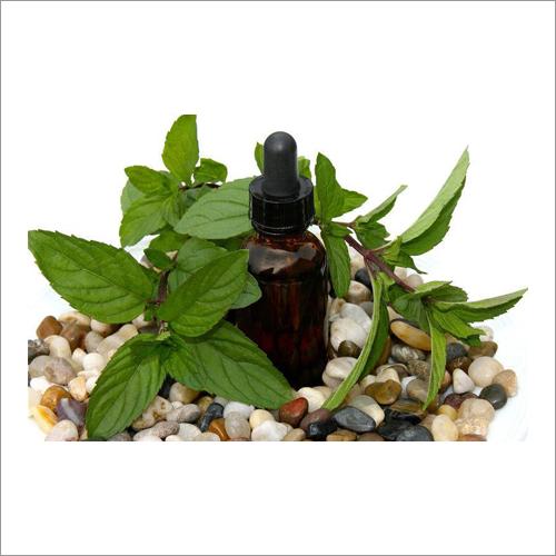 Black Peppermint Oil