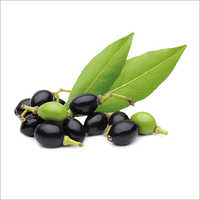 Laurel Berry Oil