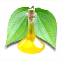 Pan Leaf Oil