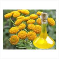 Tansy Oil