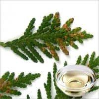 Cedar Leaf Floral Water