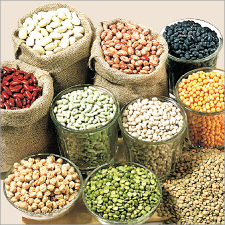 All Types of Pulses