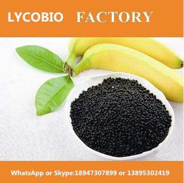 AGRICULTURE BLACK UREA WITH HUMIC BEST SOIL CONDITIONER