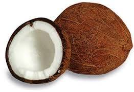 Mature Coconut