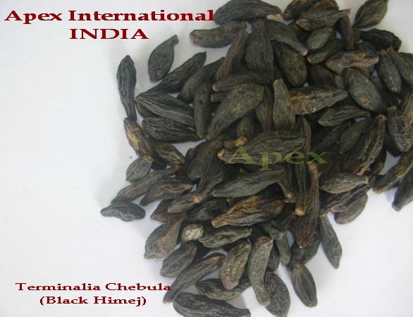 Terminalia Chebula Black